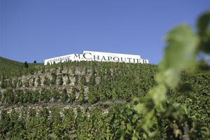 Domaine Viticole Vallée du Rhône